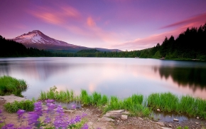 water mountains purple