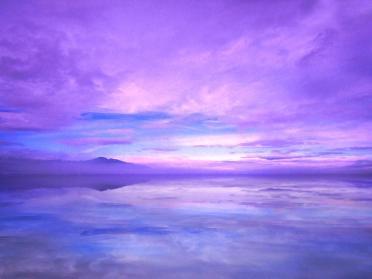 serenity violets blues