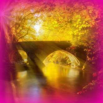 bridge-fb magenta