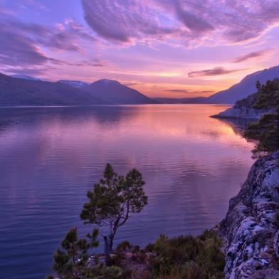 river_violet-web