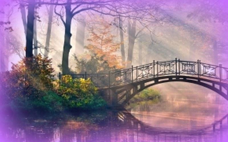 fronlahamm-river-of-movement